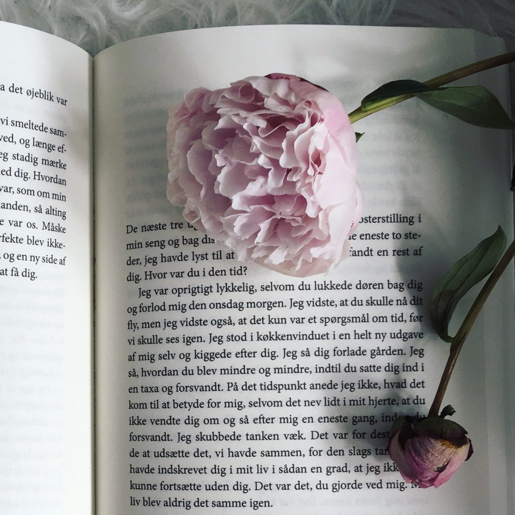 Line Sølvhøj Johansson pyskiks vold bog parforhold når solen igen står op