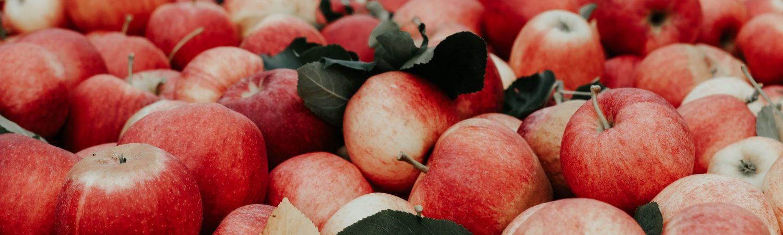 æbler frugt sund snack efterår (Foto: Unsplash)