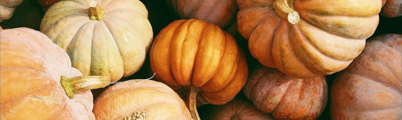 græskar halloween efterår grøntsag sund mad orange (Foto: Unsplash)