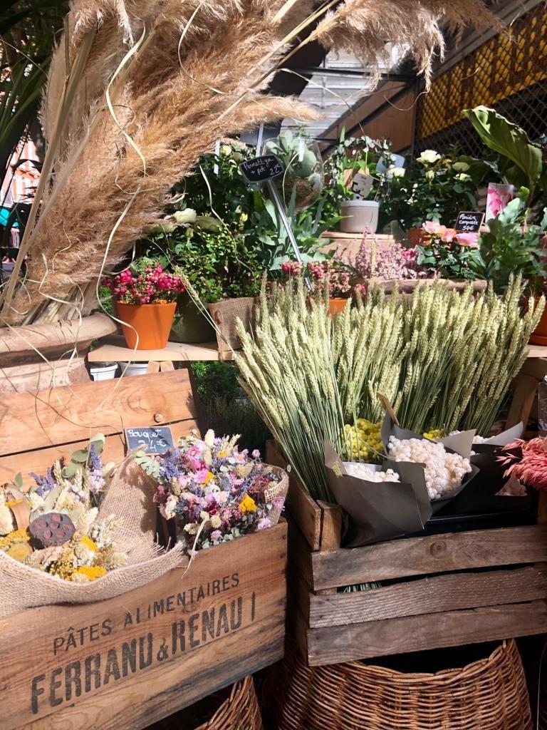 toulouse blomster frankrig silva(Foto: Federica Dondi)