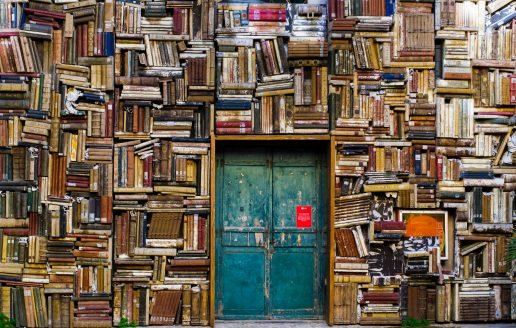 bog bøger bibliotek (Foto: Unsplash)