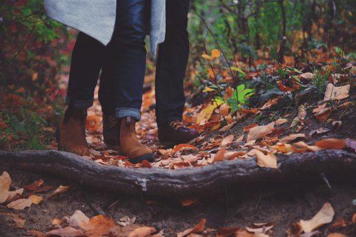 efterår blade par skov (Foto: Unsplash)