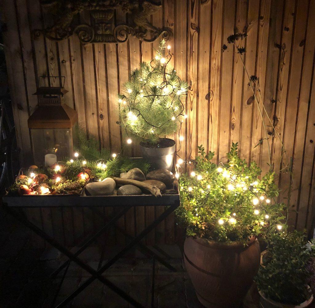 udendørs julelys julehygge (Foto: Helle Schrøder)