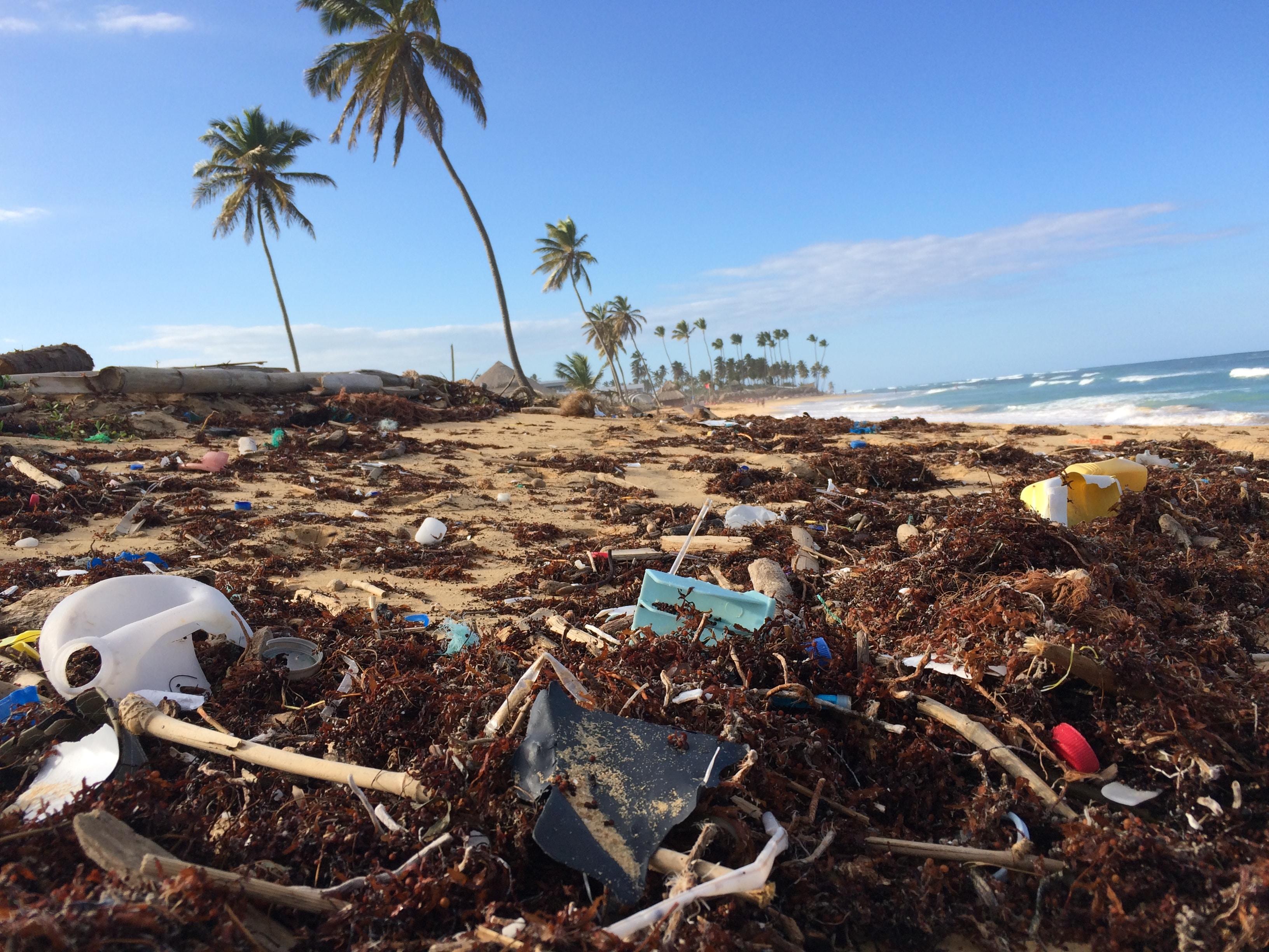 Skrald, havet, plastik, strand (Foto: Unsplash)
