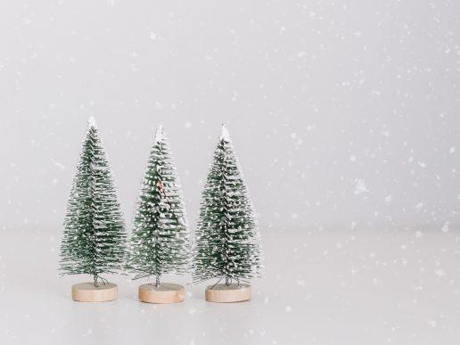 juletræer jul juledekoration (Foto: Unsplash)