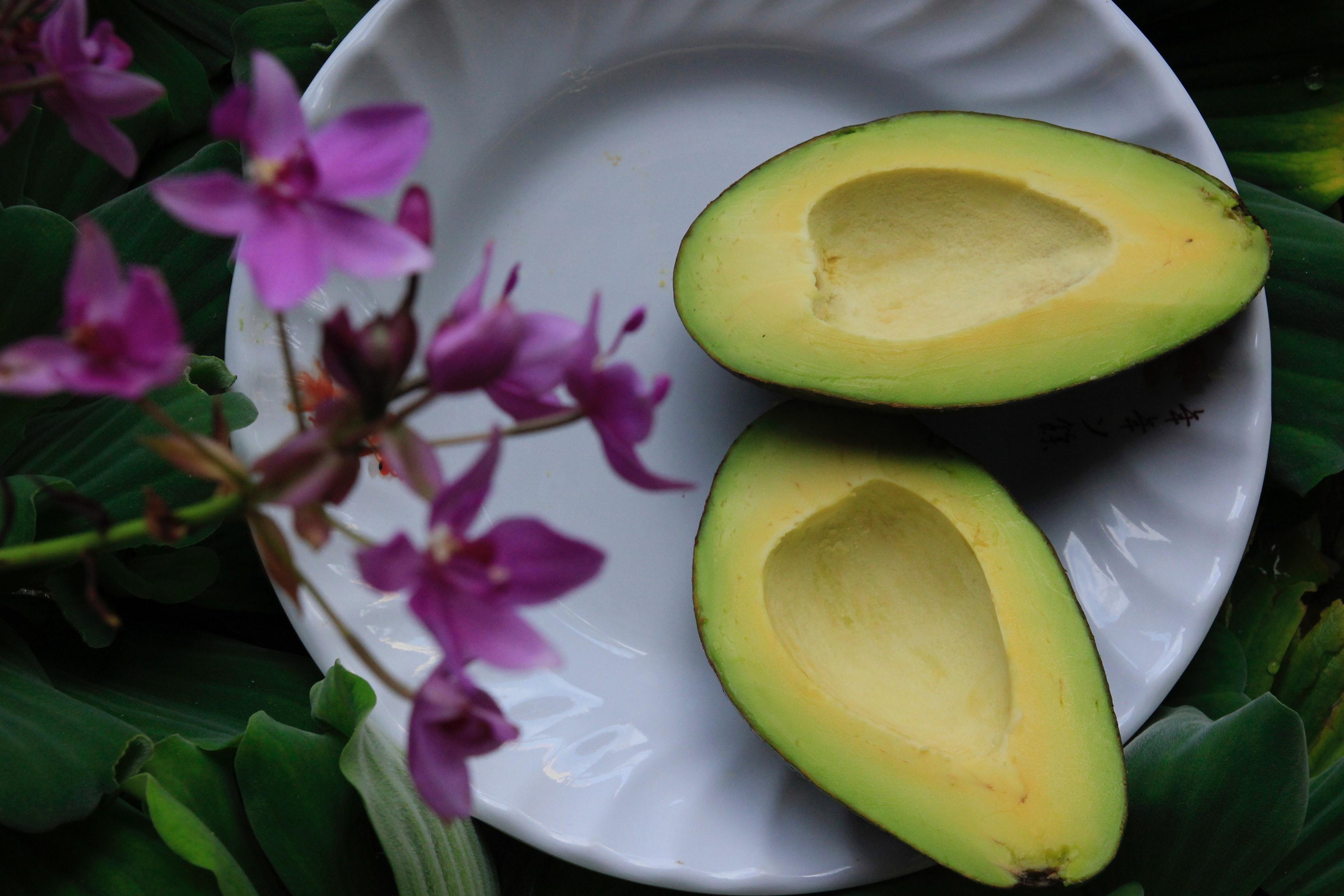 avocado, fedt, sundhedsmyter, sundhedsløgne, sundhed, kost, vaner, råd, vejledning
