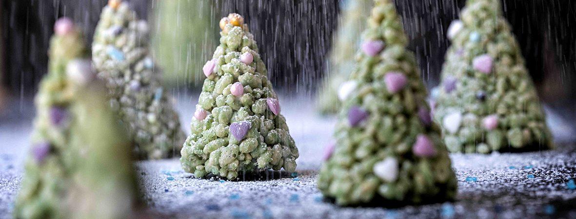 veganermad thomas erex juletræ (Foto: David Bering)