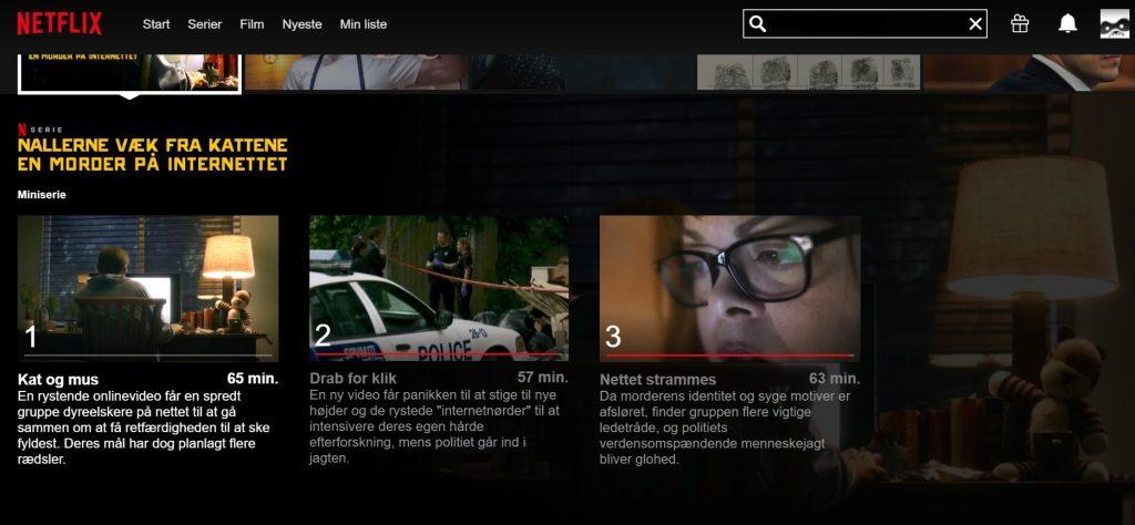 Udklip fra Netflix (Foto: Netflix)