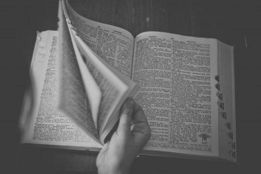 ordbog, dictionary, ord, bog
