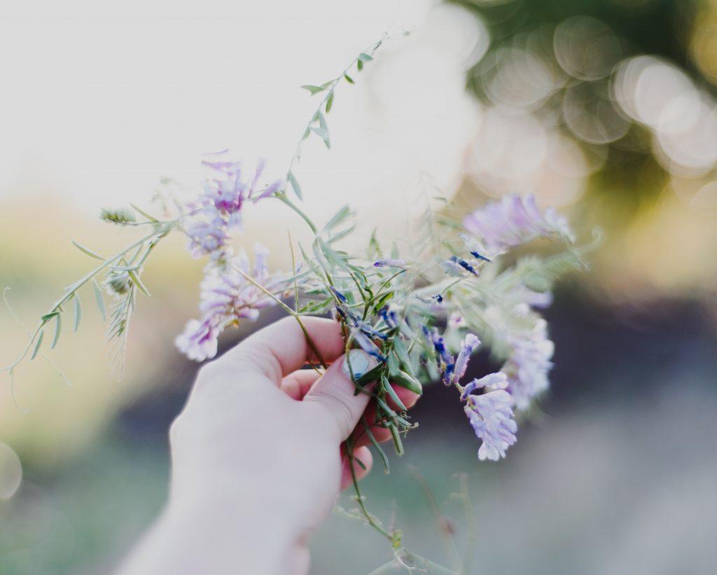 plukke blomster (Foto: Unsplash)