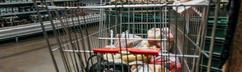 shoppingcart, indkøbsvogn