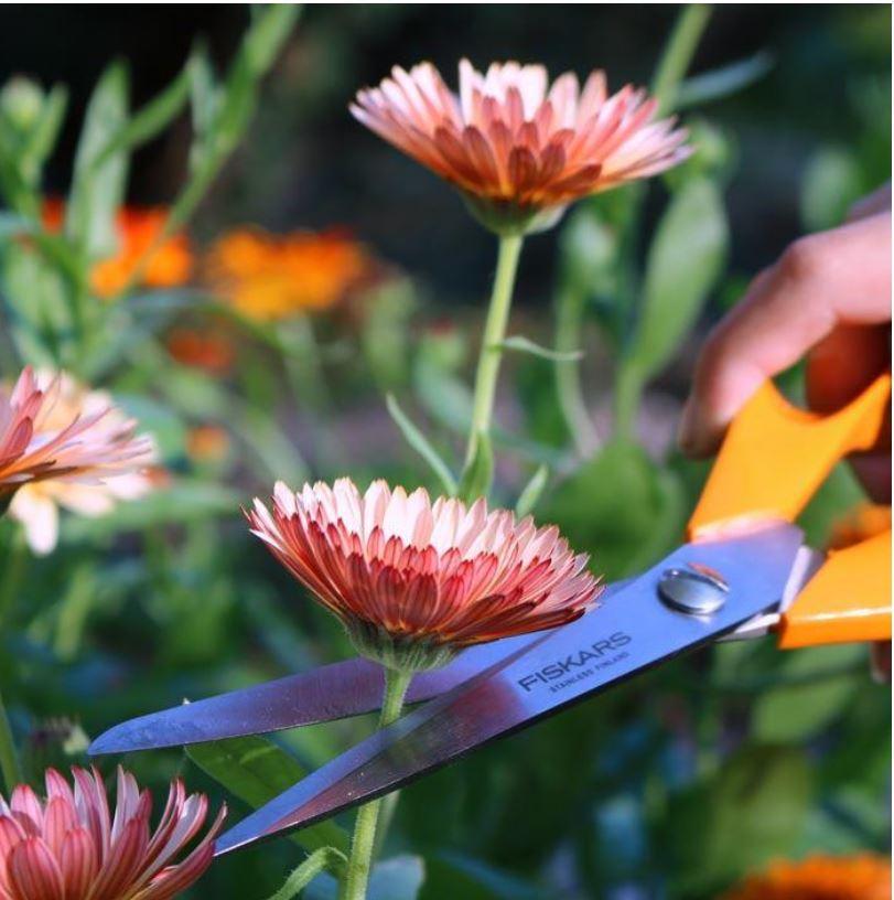 Fiskars garden have blomster (Foto: Fiskars PR)