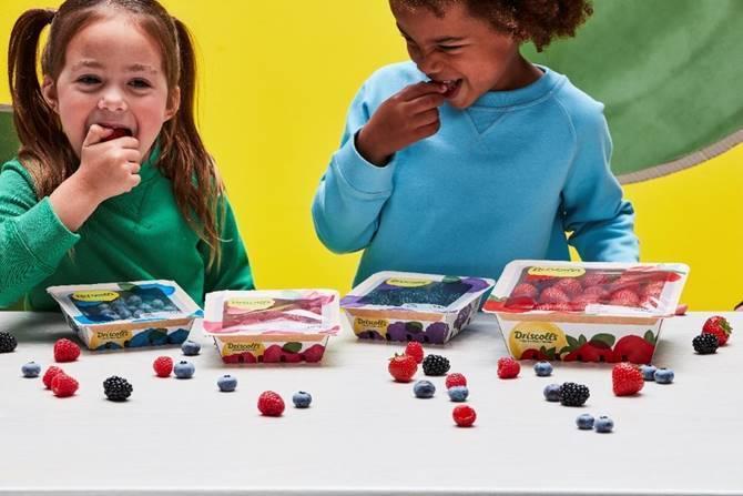Børn, bær, emballage. (Foto: PR)