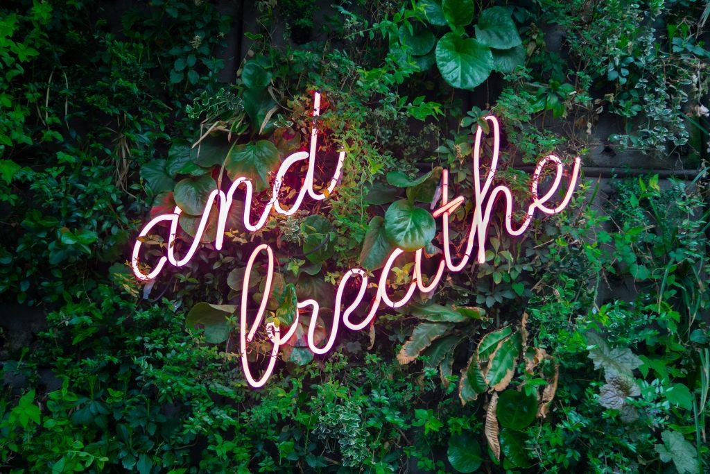 ... Og træk vejret - dybt ned i maven. (Foto: Unsplash)