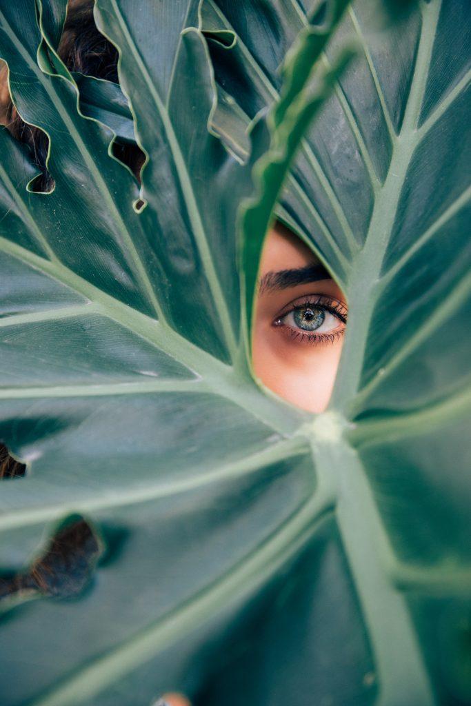 skønhed øje blad (Foto: Unsplash)