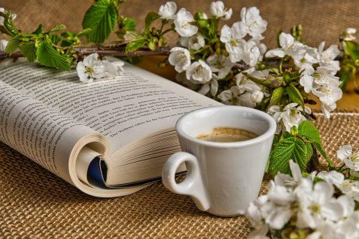 kaffe bog læse gren hygge (Foto: Pixabay)