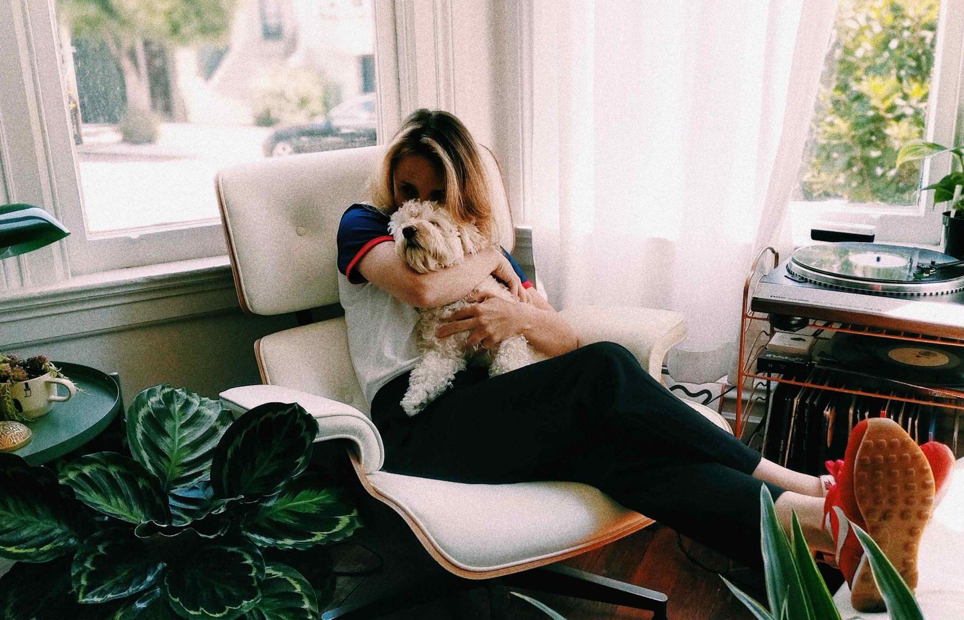 kram, hudsult, kæleedyr, hund