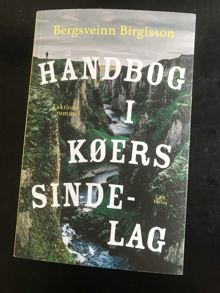 bog håndborg i køers sindelag bergsveinn birgisson (Foto: MY DAILY SPACE)