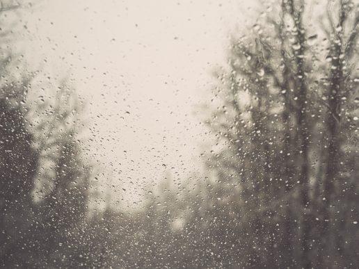 regn regnvejr gråvejrsdag vanddråber (Foto: Unsplash)