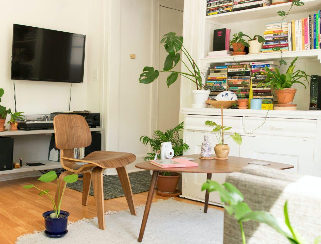 stue planter hjem lejlighed (Foto: Unsplash)