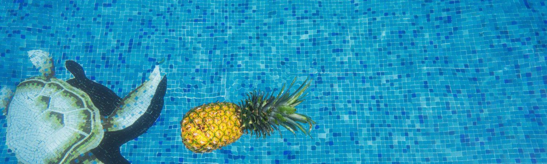 pool swimmingpool ananas sommer (Foto: Unsplash)