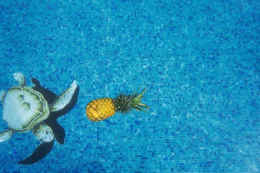 pool swimmingpool ananas sommer (Foto: Unsplash)