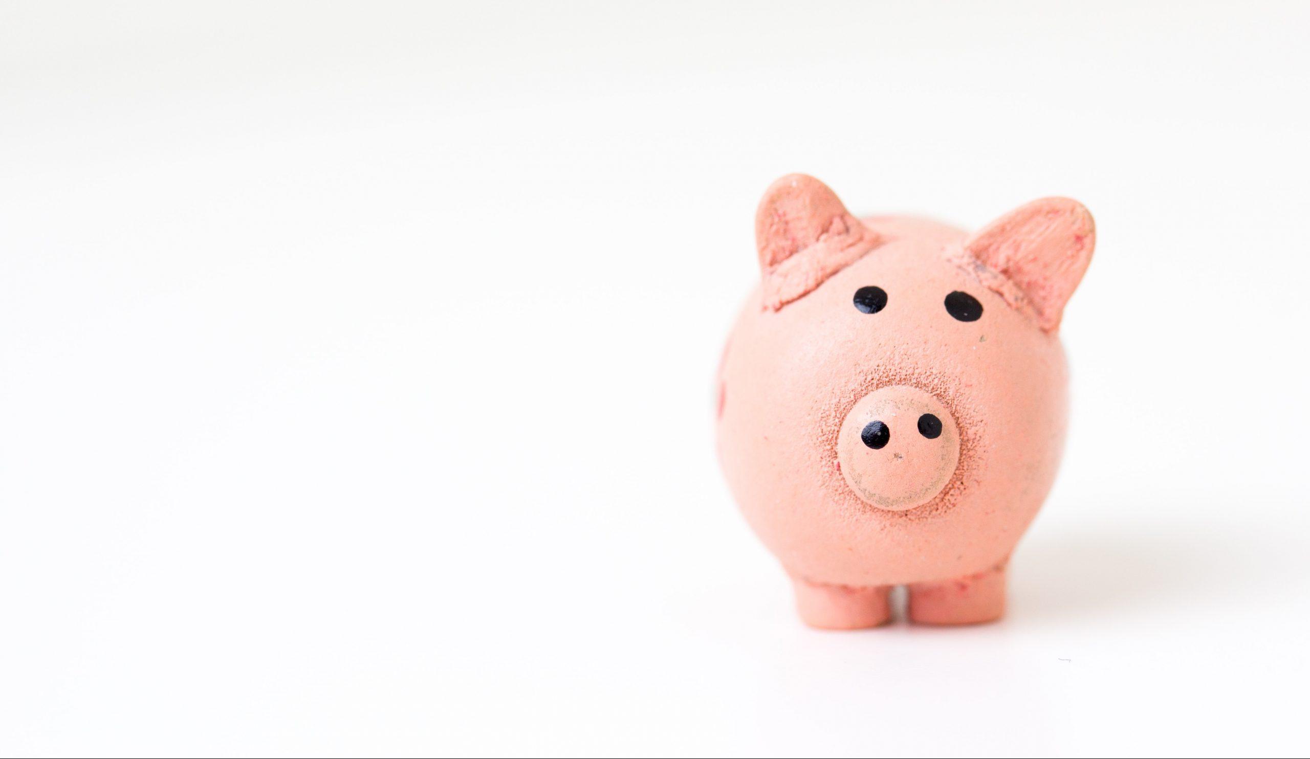 penge sparegris opsparing økonomi budget saving money (Foto: Unsplash)