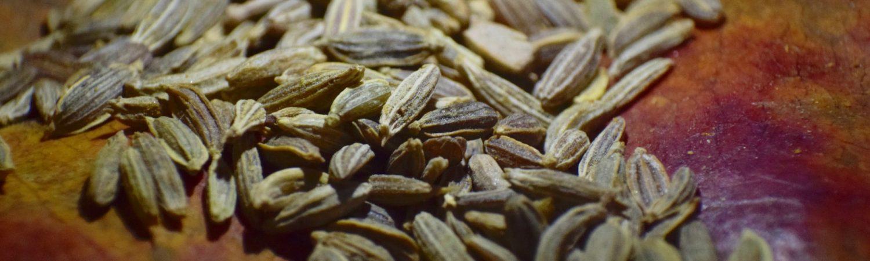frø, seeds