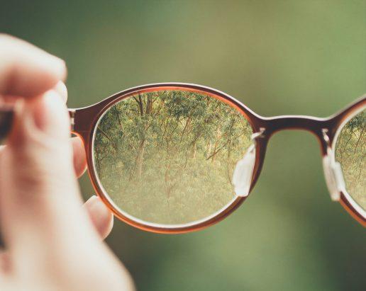 briller, træer (Foto: Unsplash)