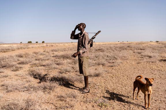 krig, mand, ørken (Foto: Jakob Dall)