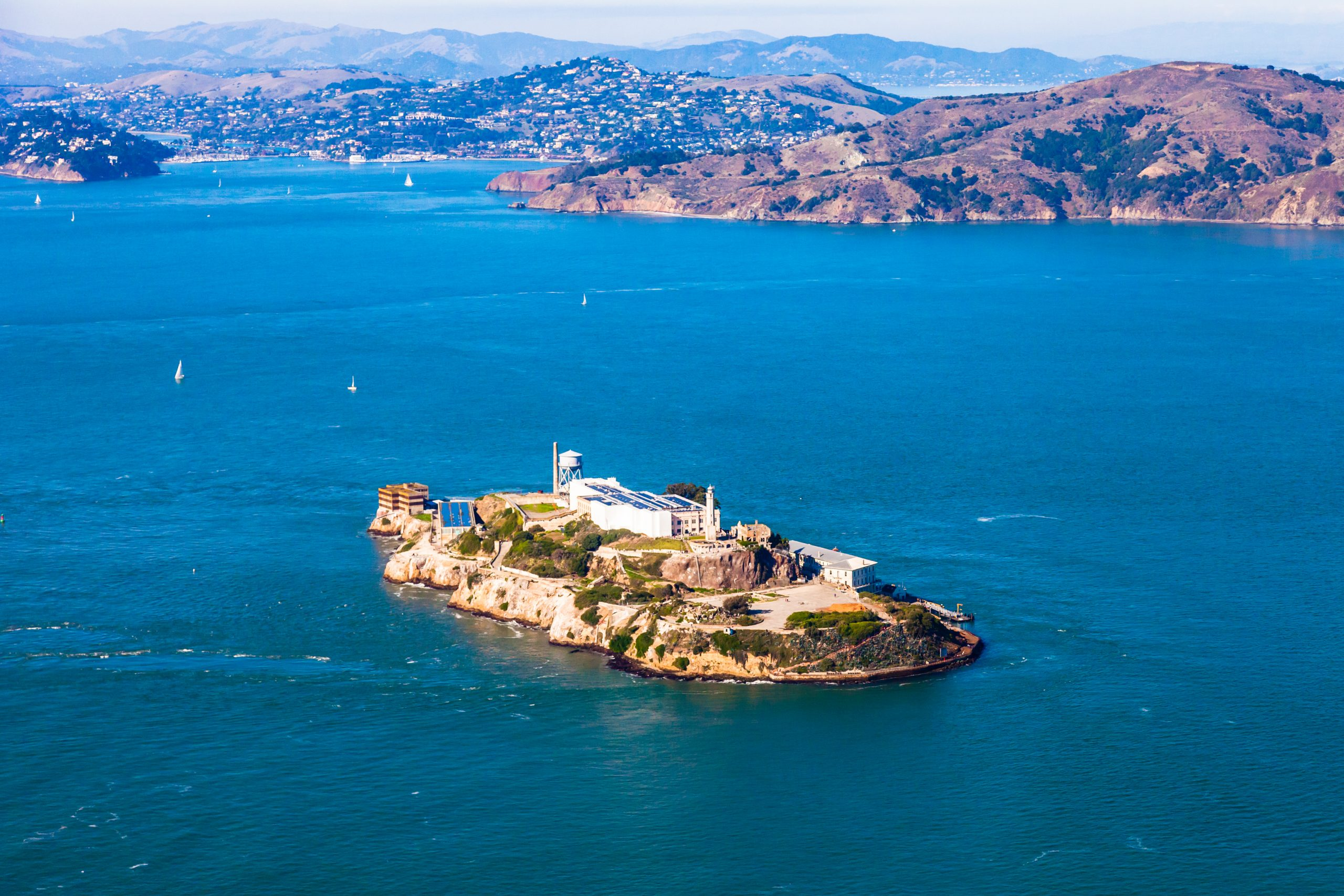 alcatraz (Foto: Nickolay Stanev)