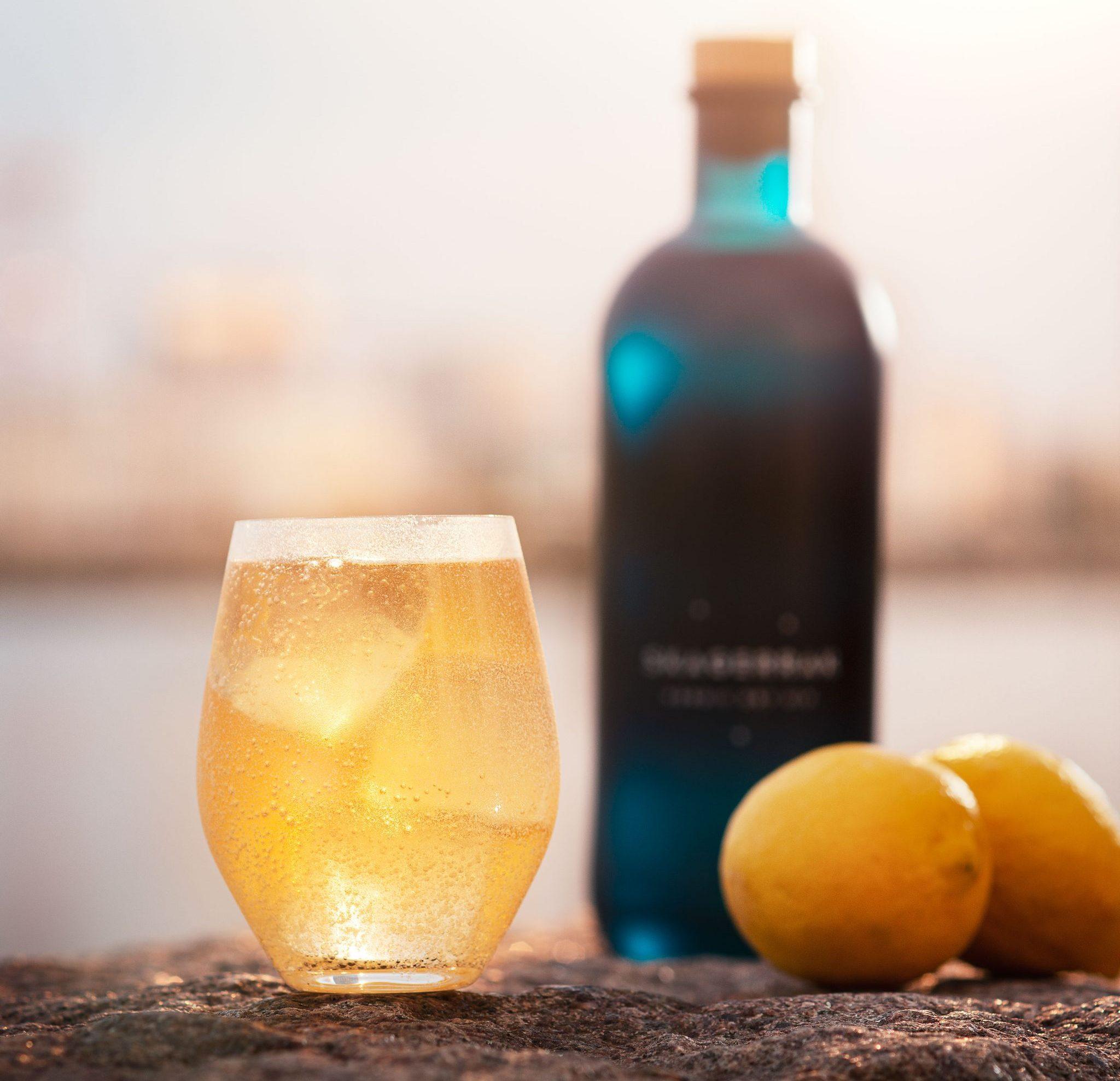 skagerrak, gin (Foto: PR)