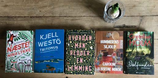 bog bøger fem på stribe (Foto: My Daily Space)