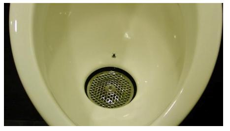 kumme, flue, nudging (Foto: Fra sprogpsykologisk undervisningsmateriale)