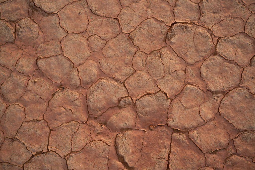 tørke varme varmerekord klima (Foto: Unsplash)