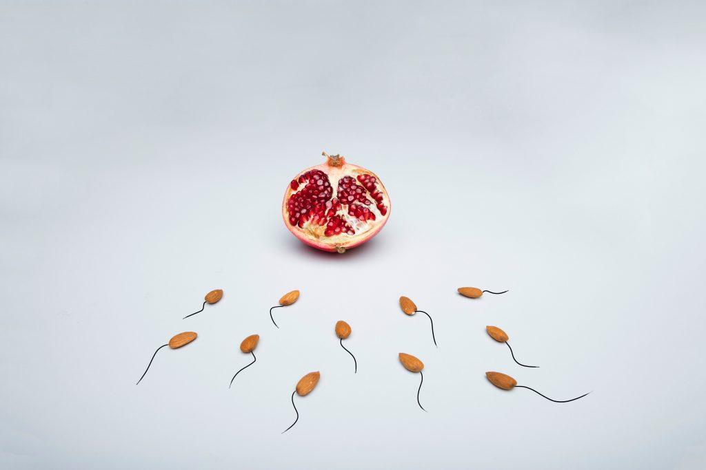 sædcelle sæd sperm (Foto: Unsplash)