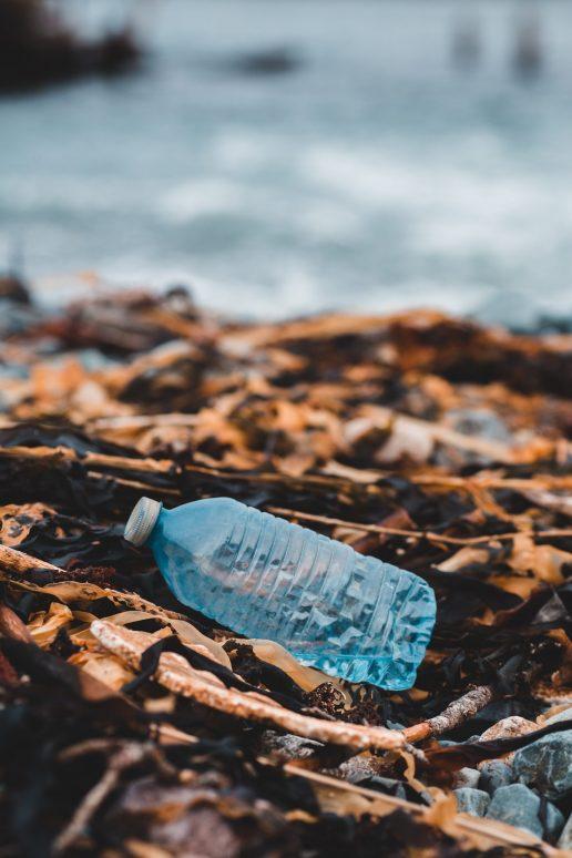 havet plastik plastikflaske (Foto: Unsplash)
