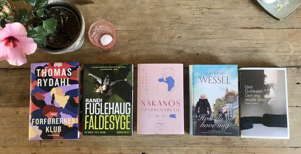 fem på stribe bog bøger