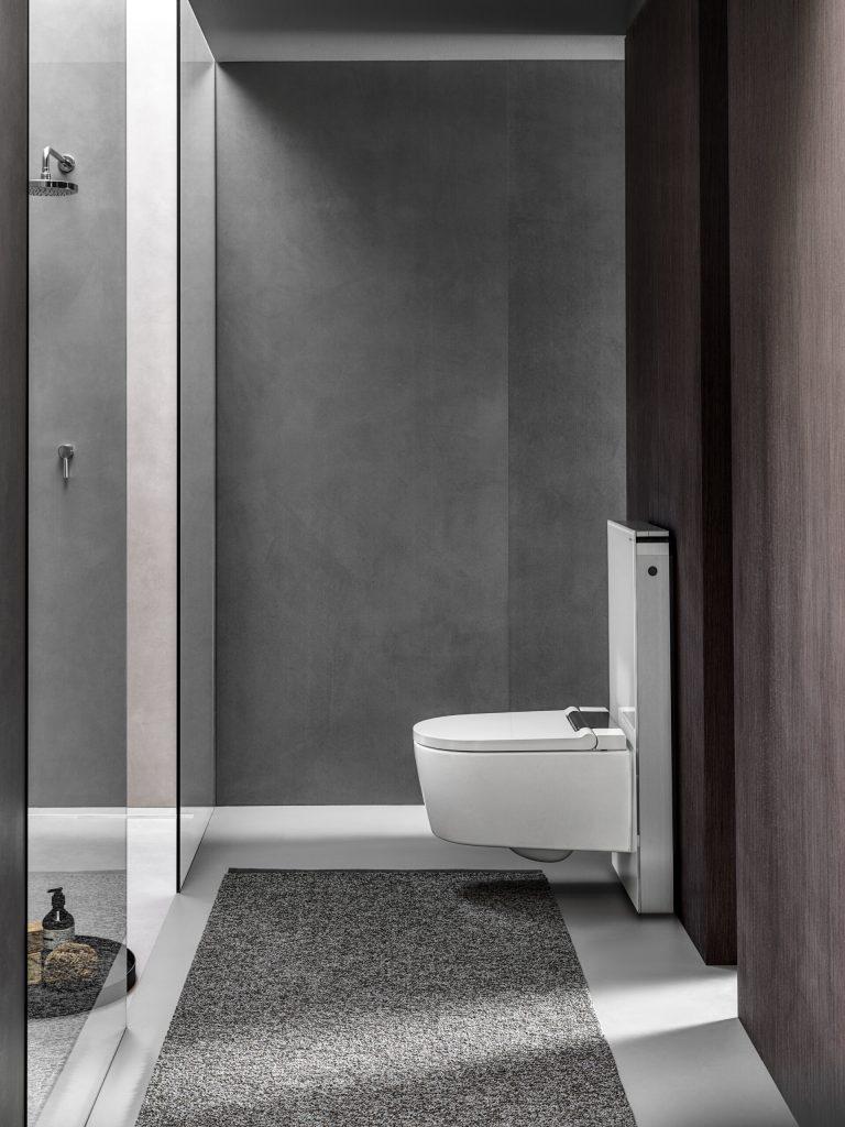toilet geberit