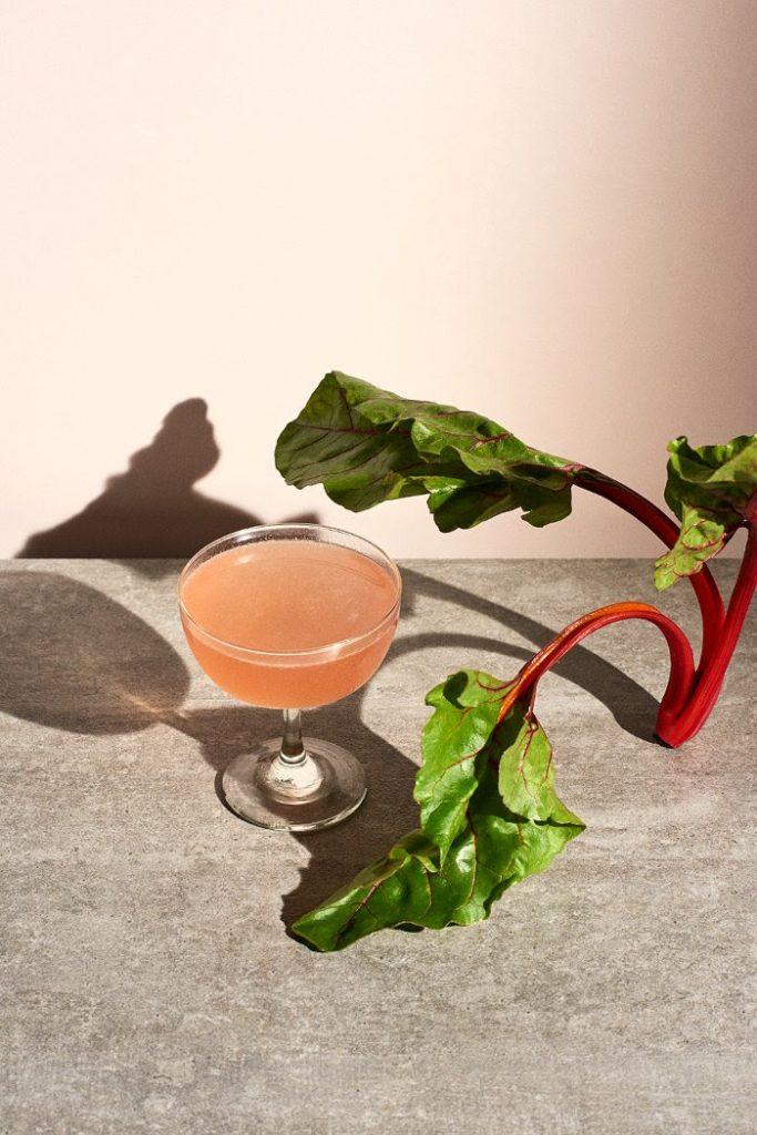 rabarber raberbercocktail gin