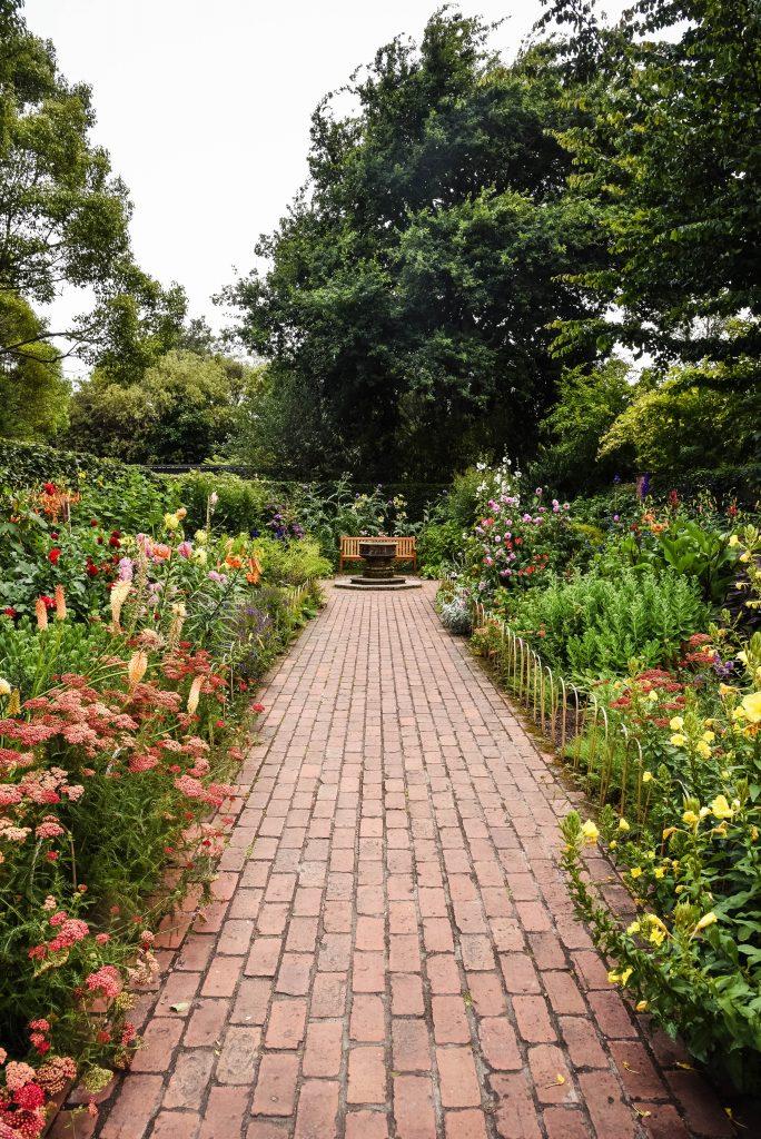 have haveliv blomster natur