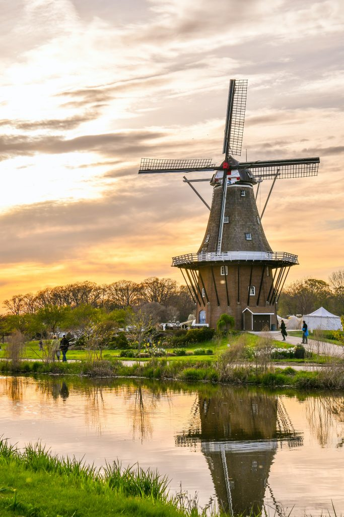 vindmølle holland