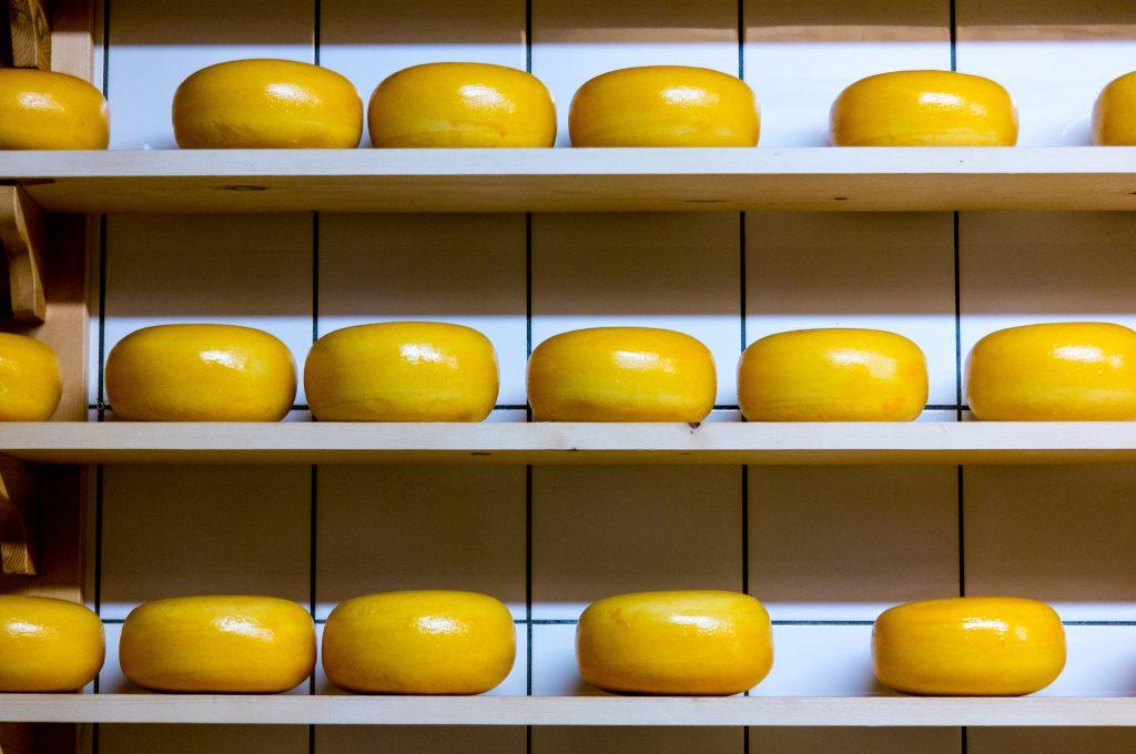 ost gouda