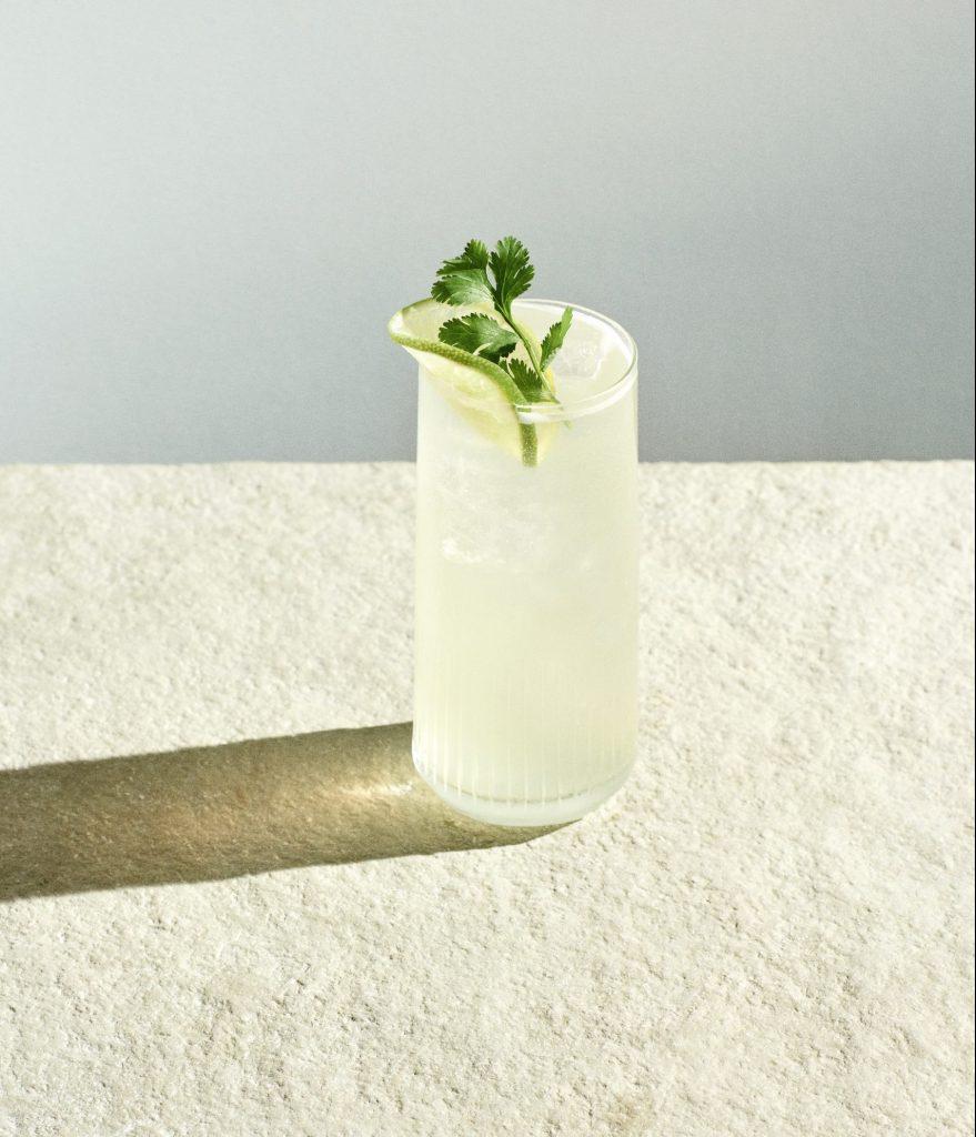 spring collins skaggerak gin
