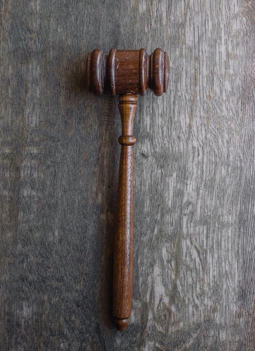dom retssal hammer