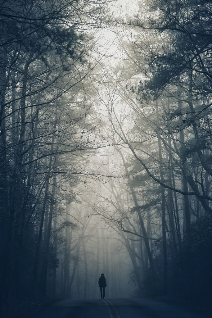 skov alene ensom