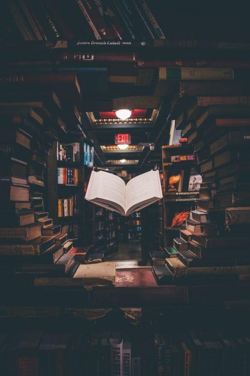 uddannelse bog bøger