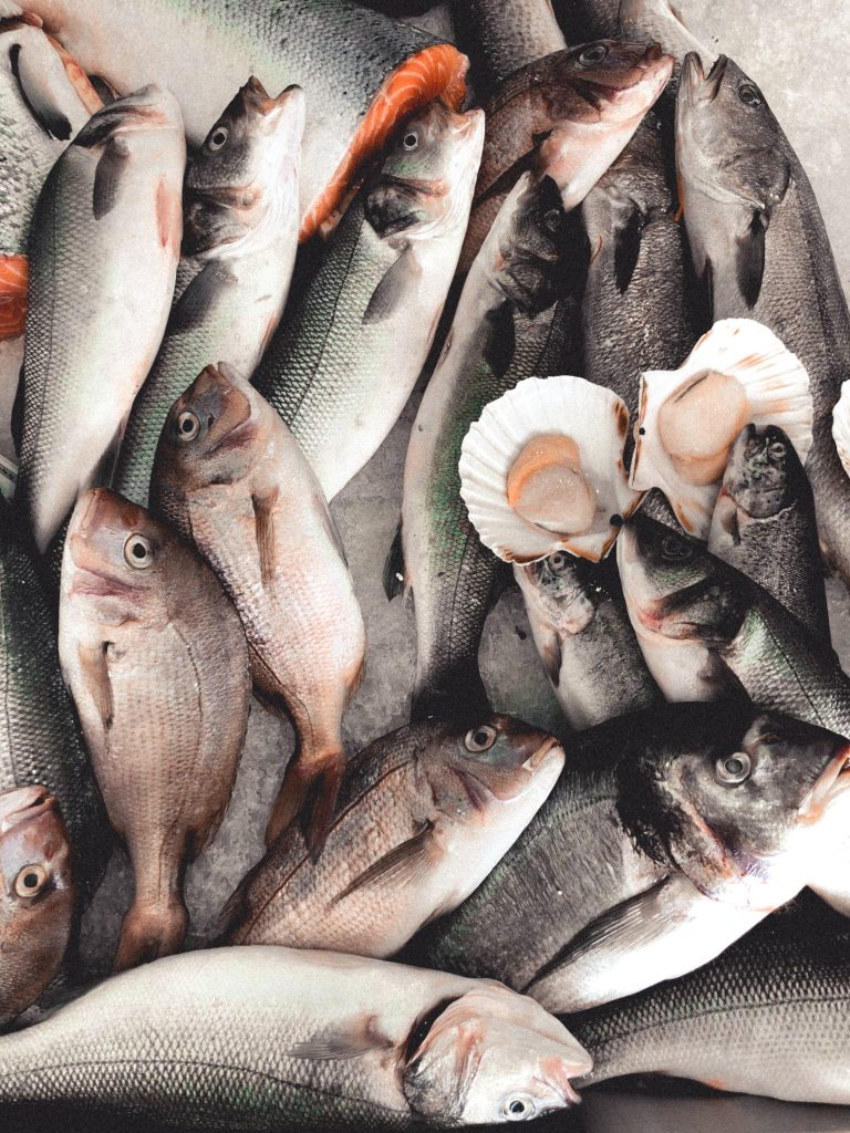 fisk laks